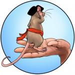 Rat au garde à vous dans une grosse main humaine.