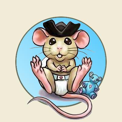 Bébé rat pirate